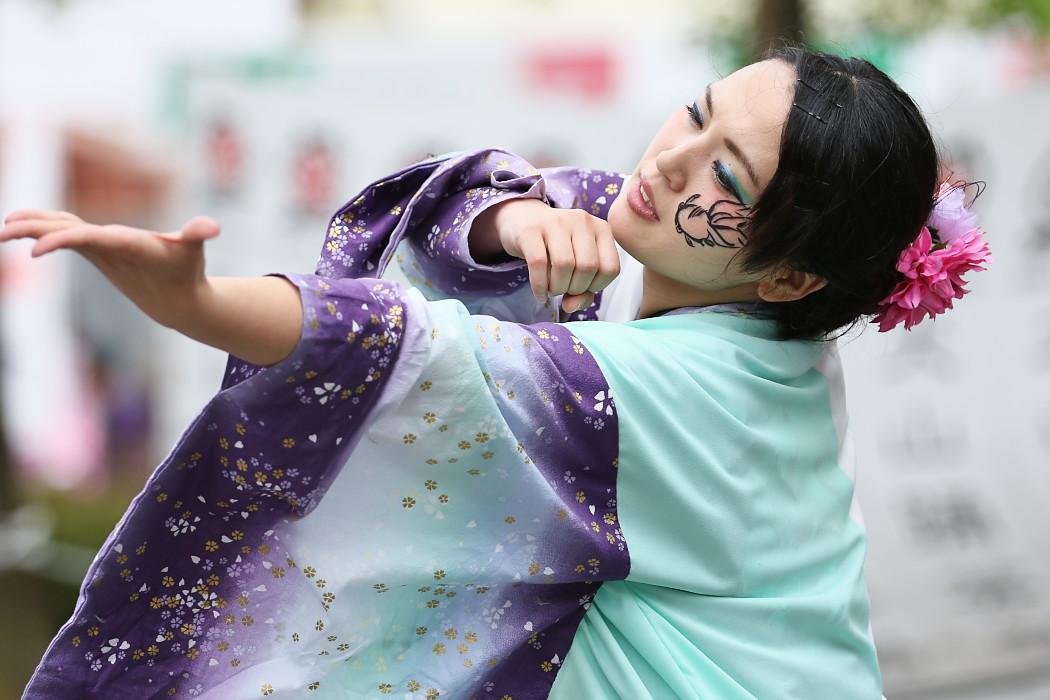 でらおおぶ @ 第13回犬山踊芸祭_c0187584_7491955.jpg