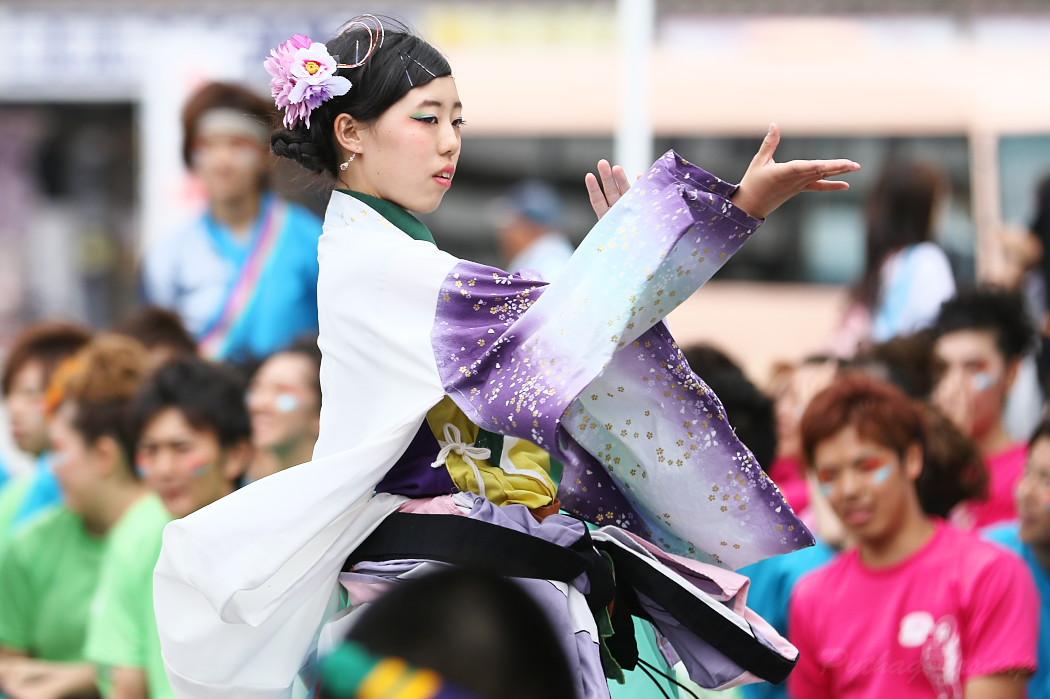 でらおおぶ @ 第13回犬山踊芸祭_c0187584_749853.jpg