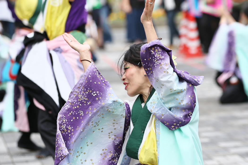 でらおおぶ @ 第13回犬山踊芸祭_c0187584_7504399.jpg