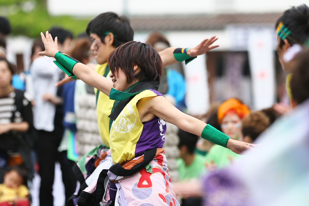 でらおおぶ @ 第13回犬山踊芸祭_c0187584_7512767.jpg