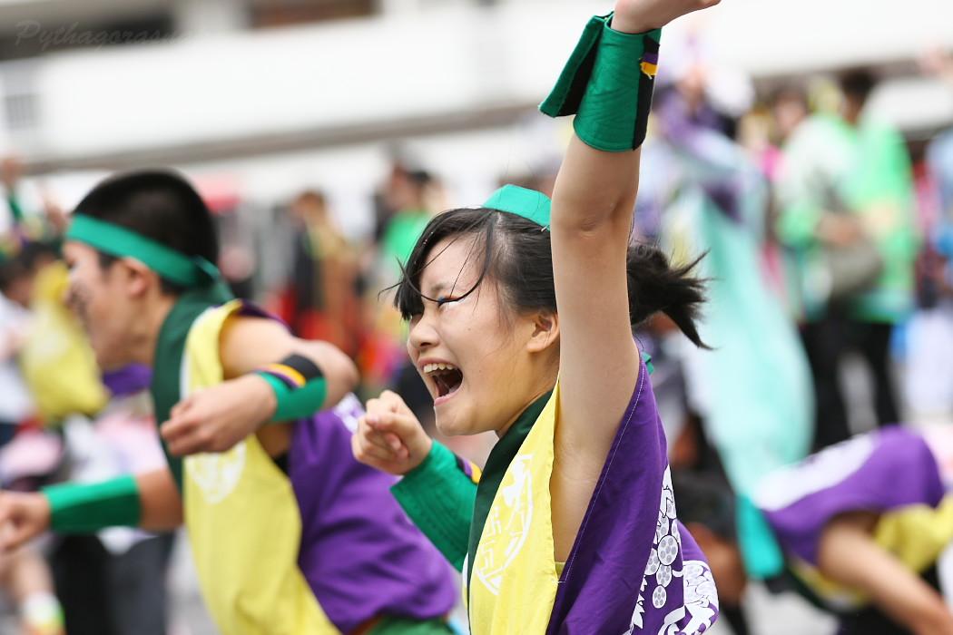 でらおおぶ @ 第13回犬山踊芸祭_c0187584_7514697.jpg