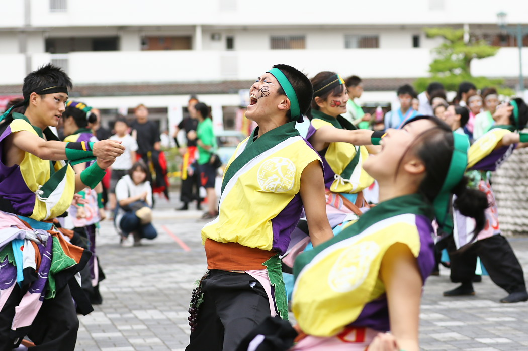 でらおおぶ @ 第13回犬山踊芸祭_c0187584_752636.jpg