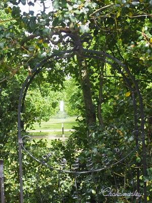 Pembroke Lodgeの藤 そしてピクニック♪_f0238789_3581872.jpg