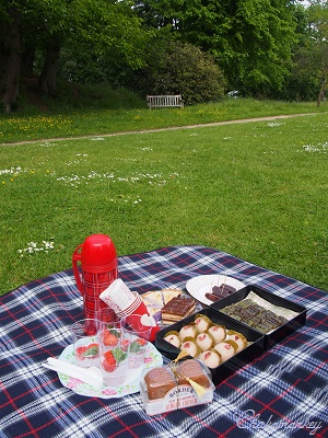 Pembroke Lodgeの藤 そしてピクニック♪_f0238789_44742.jpg