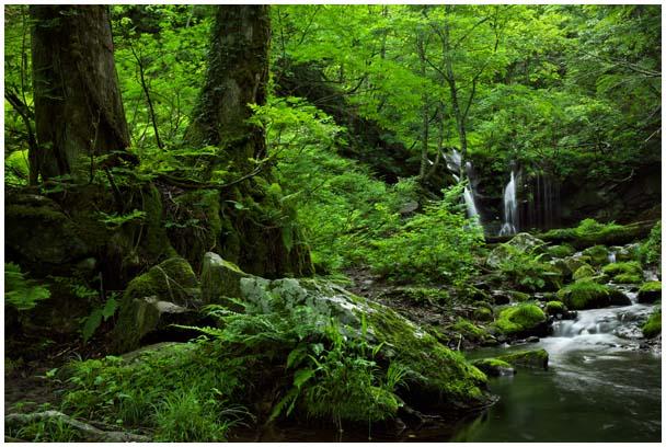 猿壺の滝(さるぼのたき)_d0272207_955526.jpg