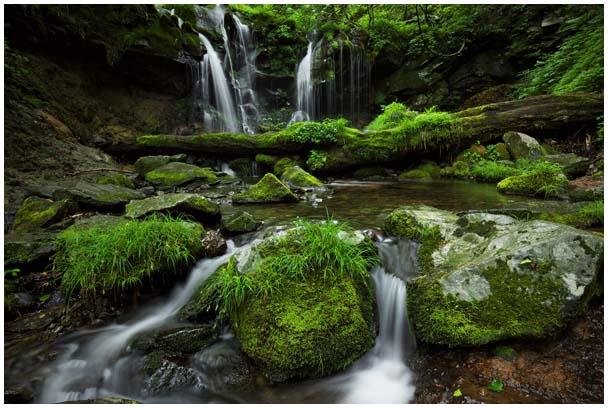 猿壺の滝(さるぼのたき)_d0272207_956089.jpg