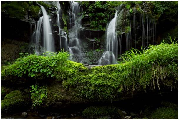 猿壺の滝(さるぼのたき)_d0272207_956241.jpg