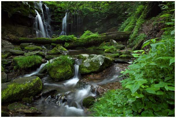 猿壺の滝(さるぼのたき)_d0272207_956885.jpg
