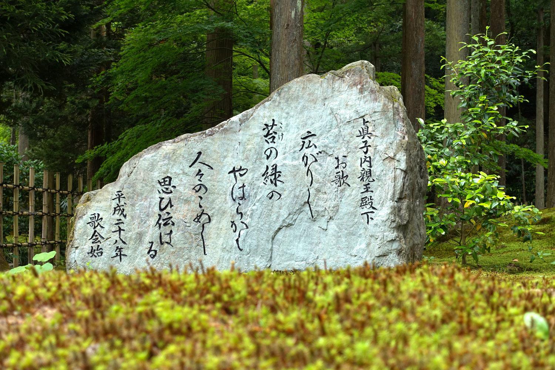 苔の里_c0220824_06090640.jpg