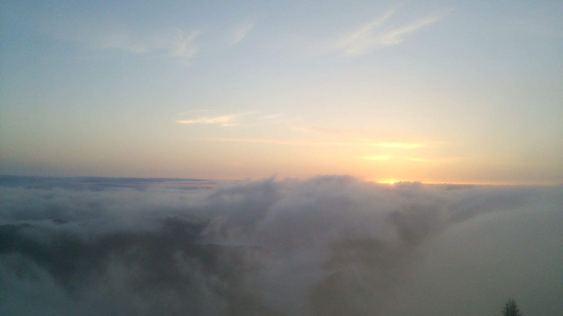 6月8日 朝の気温9℃。_c0089831_522057.jpg