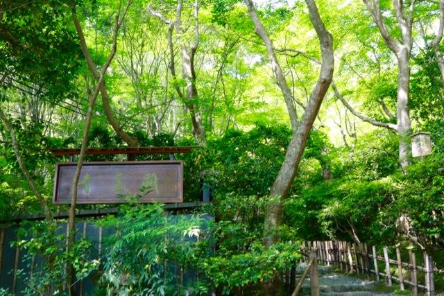 【祇王寺】京都旅行 - 13 -_f0348831_22350662.jpg
