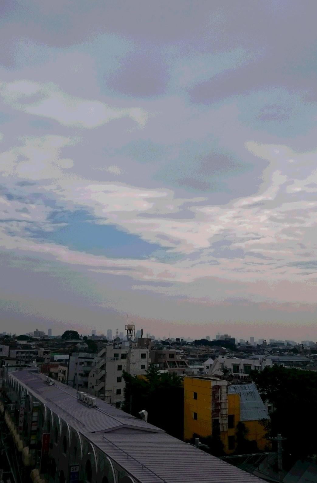 梅雨の合間に_d0155439_18304043.jpg