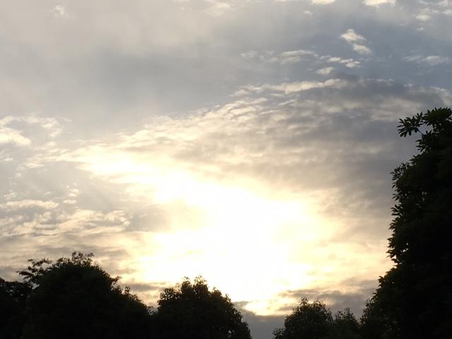 久しぶりに…雲。(^^)~じっと見つめてみる。~_b0298740_13014970.jpg