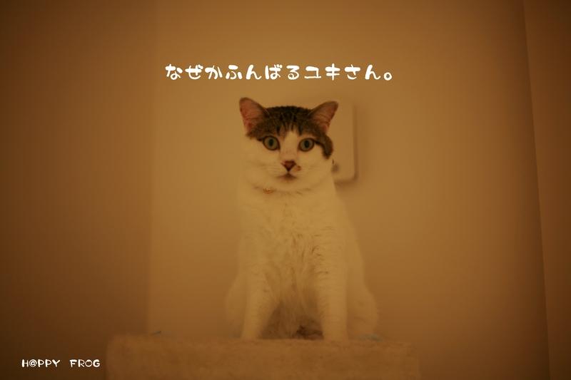 f0032042_21383539.jpg