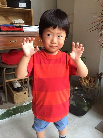 homspun kid\'s : 太ボーダー半袖 T シャツ_a0234452_18272698.jpg
