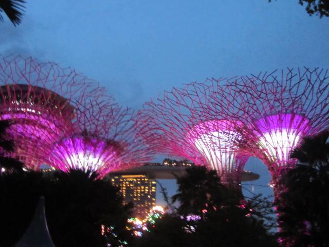 クアラルンプール&シンガポール4日目②_a0100706_7583661.jpg