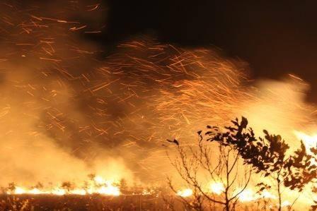 昨年の火災の消火現場_d0135210_9473717.jpg