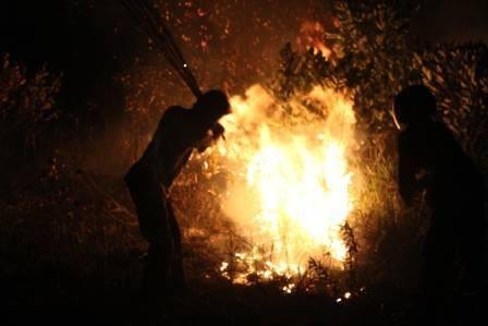 昨年の火災の消火現場_d0135210_954488.jpg