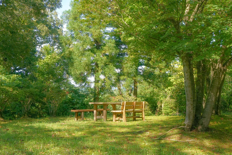 森林セラピー基地_c0220824_10054587.jpg