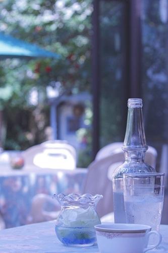 お水の美味しい季節_e0241944_19371160.jpg