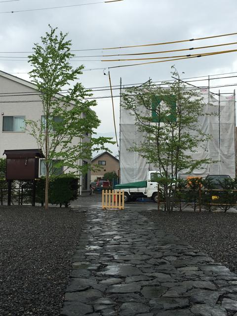 梅雨時の仕事_c0112447_17561999.jpg