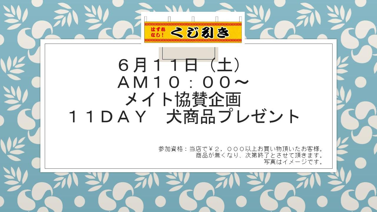 160609 11DAYイベント告知_e0181866_10323947.jpg