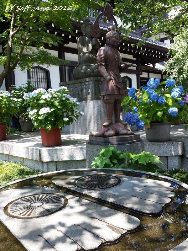 ◆ アジサイ咲く鎌倉へ、その1 「長谷寺」へ (2016年6月)_d0316868_12554021.jpg