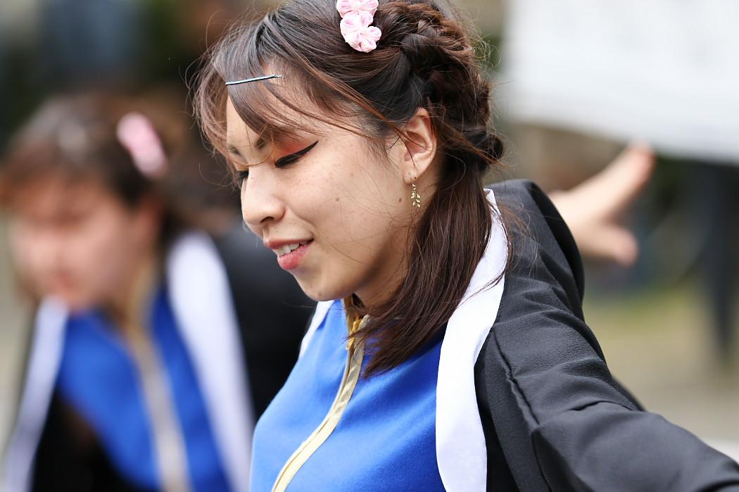 江南よさこい連~kohga~ @ 第13回犬山踊芸祭_c0187584_8373545.jpg