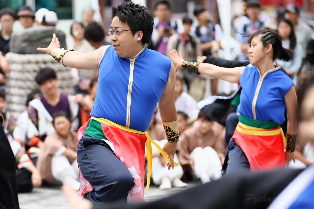 江南よさこい連~kohga~ @ 第13回犬山踊芸祭_c0187584_8394679.jpg
