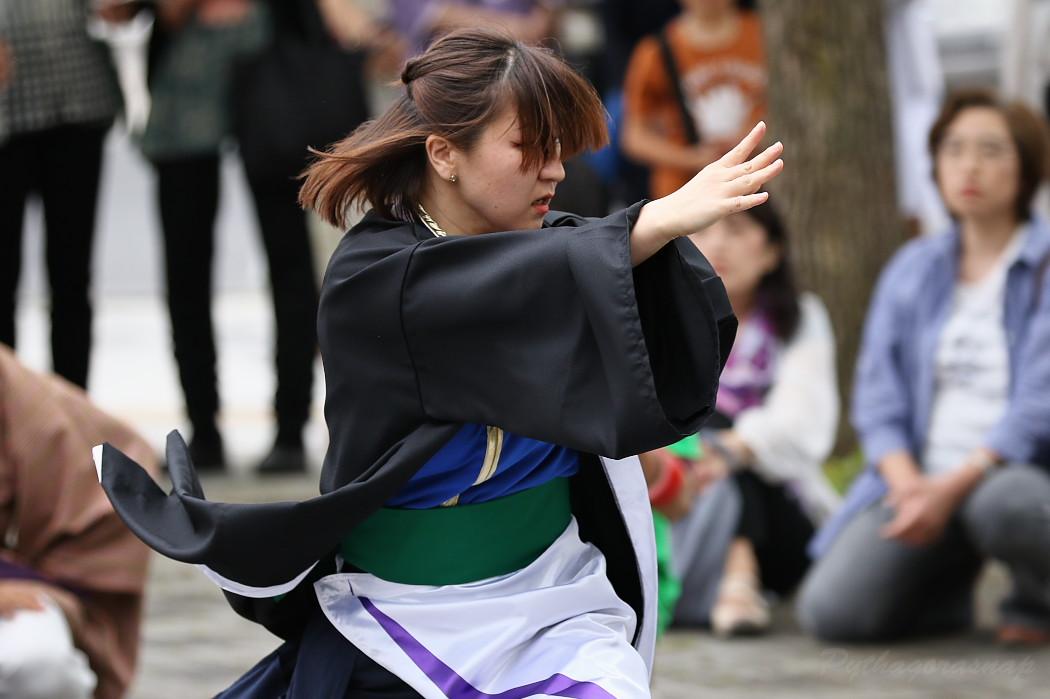 江南よさこい連~kohga~ @ 第13回犬山踊芸祭_c0187584_840586.jpg