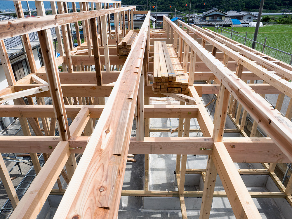 片流れ屋根の木造平屋の家 ─第1回─_a0163962_15352362.jpg