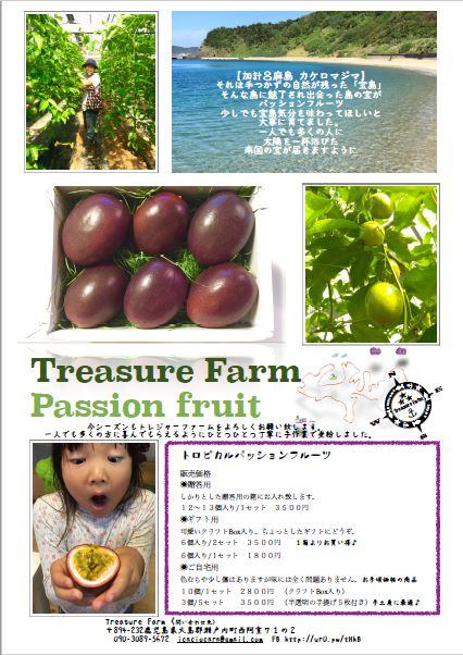 もう一軒、加計呂麻島在住のパッション農家さんをご紹介します!_e0028387_921713.jpg