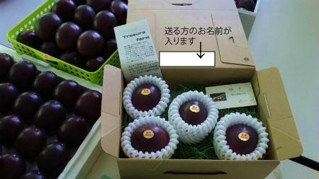 もう一軒、加計呂麻島在住のパッション農家さんをご紹介します!_e0028387_954215.jpg