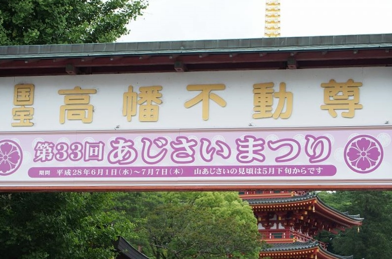 ミニ撮影会_e0348392_09550927.jpg
