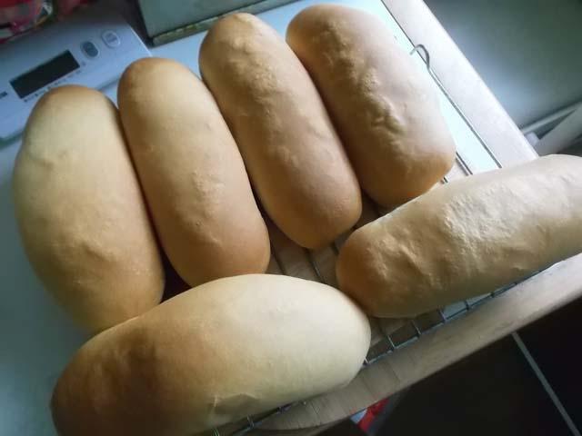 パンを焼いていたら嫁と孫がやって来た(ー_ー)!!_f0019498_20132569.jpg