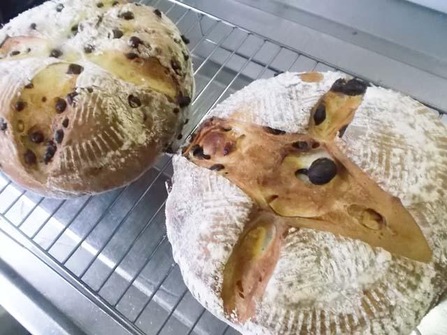 パンを焼いていたら嫁と孫がやって来た(ー_ー)!!_f0019498_203416.jpg
