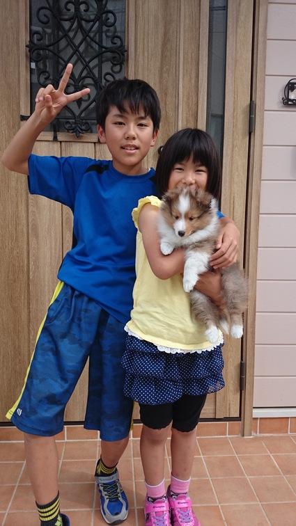 子犬のお迎えが有りました。_a0139367_21401646.jpg
