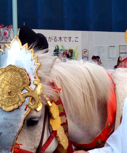 日枝神社の山王祭の神幸行列  散歩_c0201876_12243945.jpg