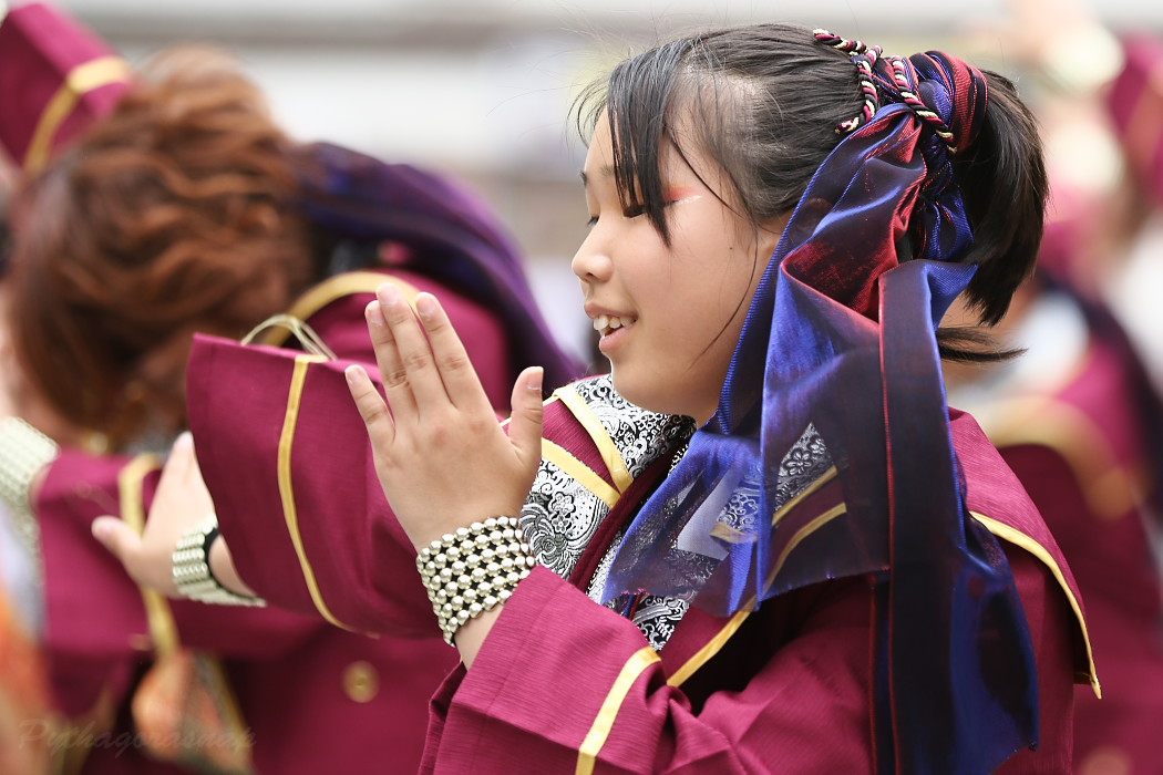 Meetiα @ 第13回犬山踊芸祭_c0187584_9255075.jpg