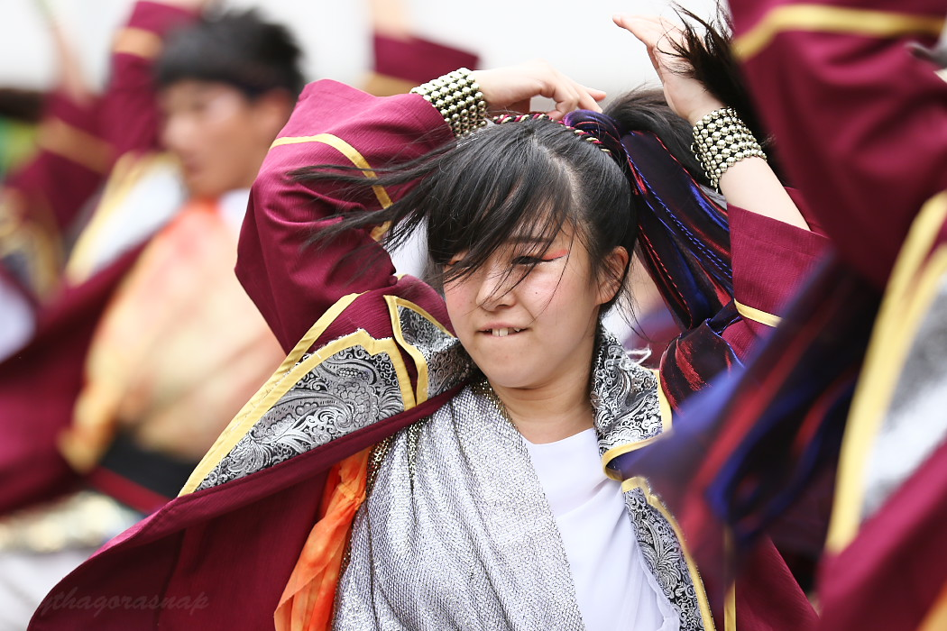 Meetiα @ 第13回犬山踊芸祭_c0187584_926010.jpg