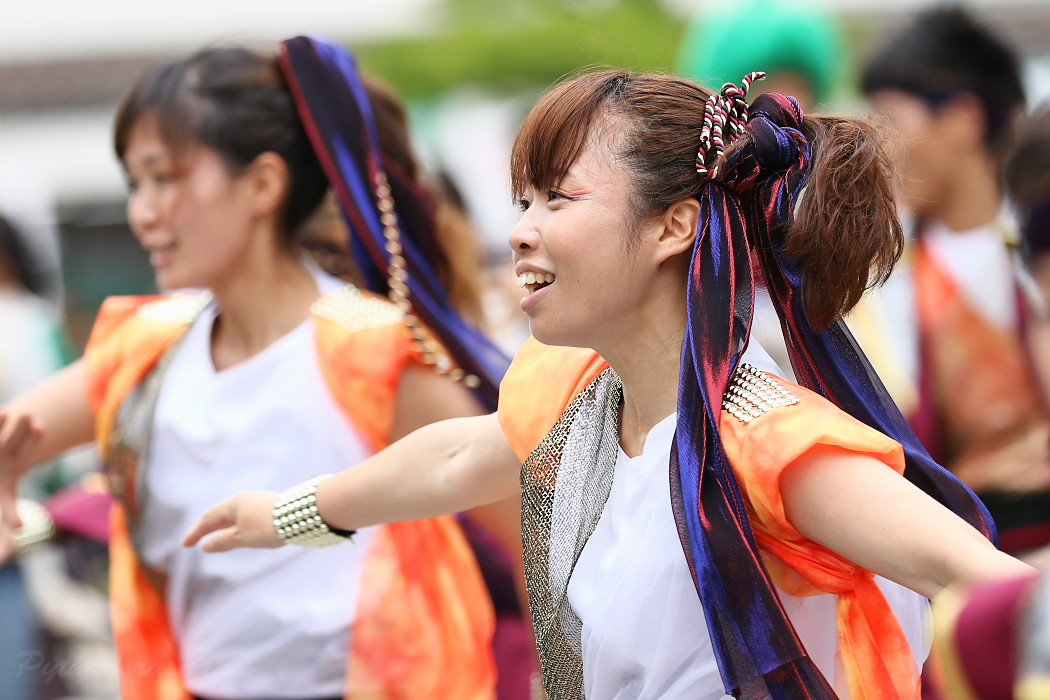 Meetiα @ 第13回犬山踊芸祭_c0187584_9264173.jpg