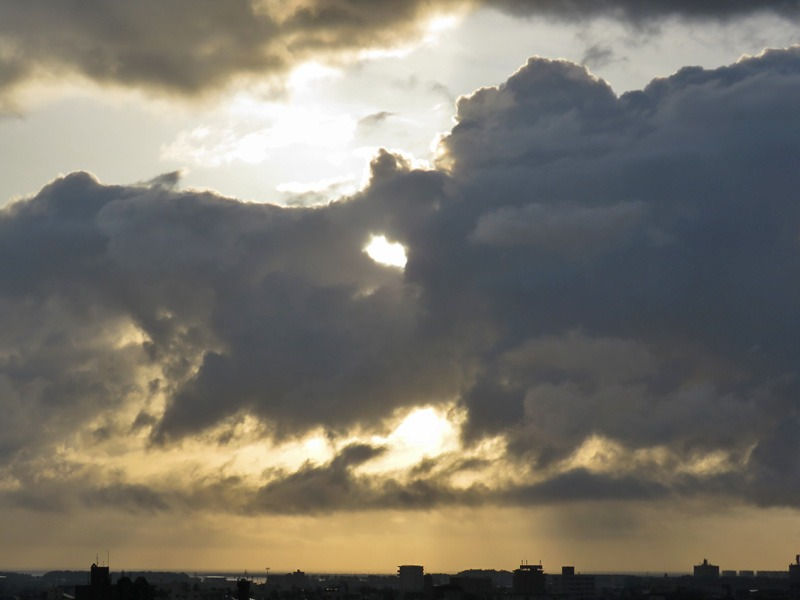 朝の空、朝のカラスに朝のネコ、そしてもちろん朝の犬^m^_c0049299_2310984.jpg