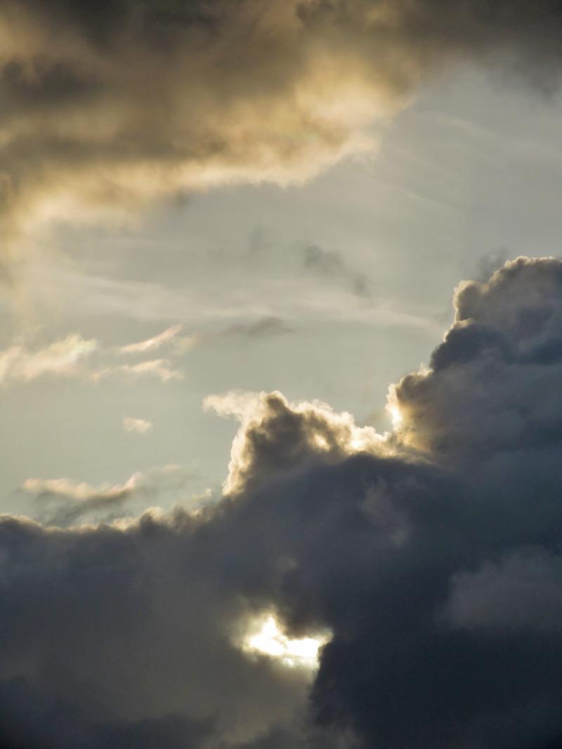 朝の空、朝のカラスに朝のネコ、そしてもちろん朝の犬^m^_c0049299_2312716.jpg