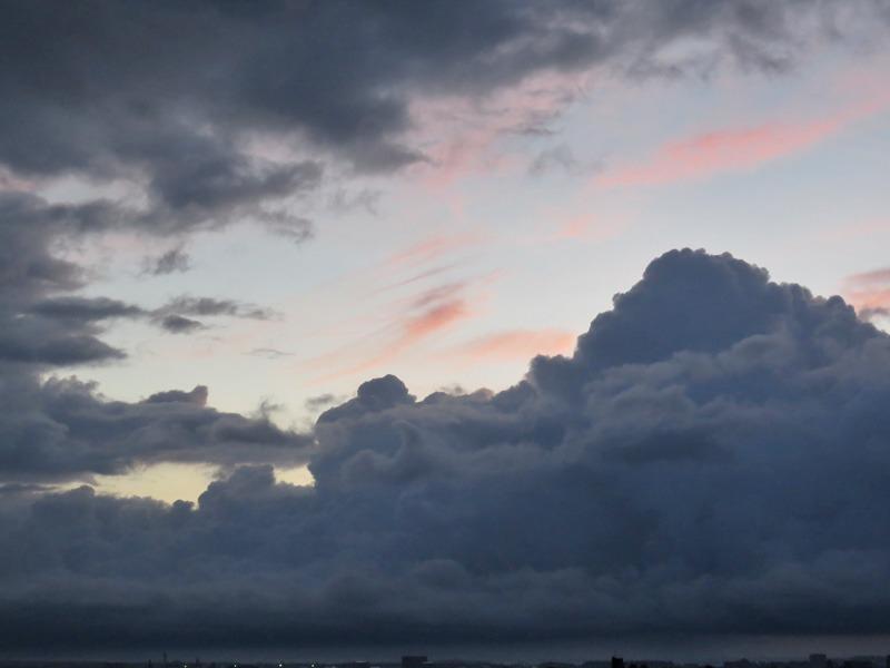 朝の空、朝のカラスに朝のネコ、そしてもちろん朝の犬^m^_c0049299_238105.jpg