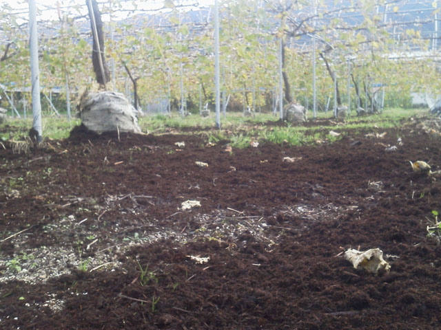 大量の堆肥_b0168320_0185151.jpg
