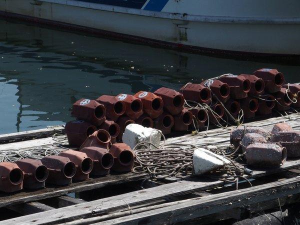 丹那漁港①_b0190540_12583289.jpg