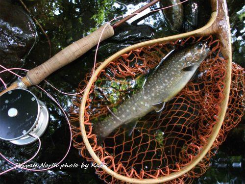 本日の釣り_d0261148_15245735.jpg