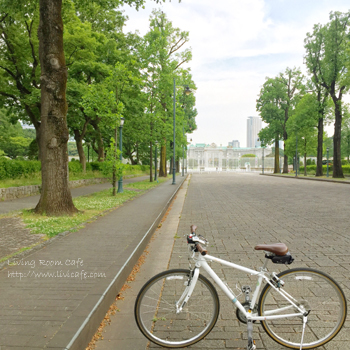 自転車を好きになった瞬間_e0040957_01273157.jpg