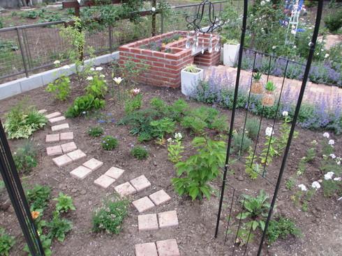 レンガ花壇横に新しいコーナーをつくりました_a0243064_17491758.jpg