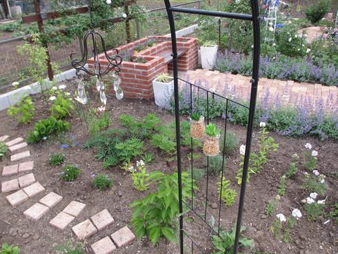 レンガ花壇横に新しいコーナーをつくりました_a0243064_1812787.jpg